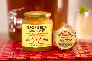 Beagle's Bees 100% Pure Honey